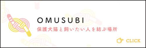 omusubi-img