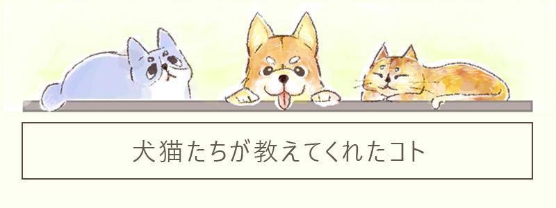 【1コマ】犬猫たちが教えてくれたコト