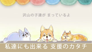 保護犬猫支援